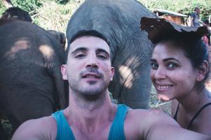 elephant27
